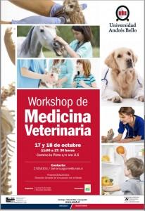 Workshop octubre 2015
