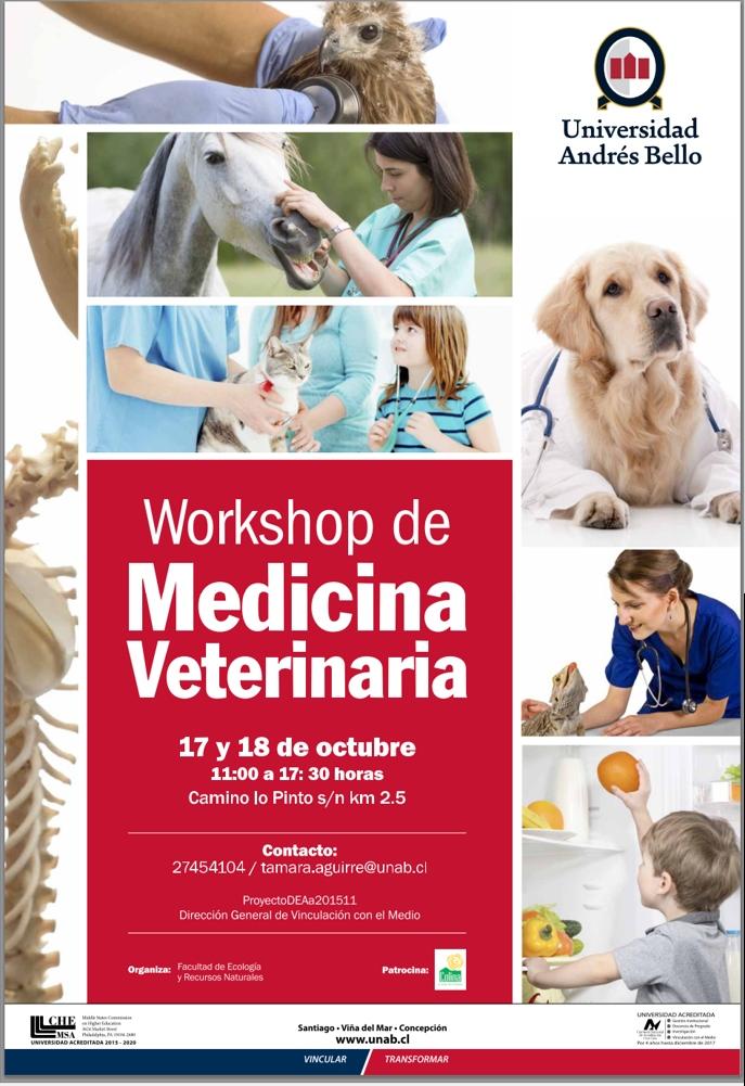 Workshop de Medicina Veterinaria en Colina