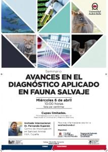Afiche charla diagnostico Fauna.