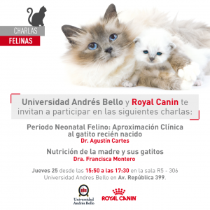 Charlas_felinas Agustin Cartes