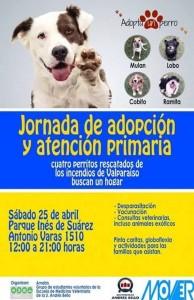 Jornada Adopcion Parque Ines de Suarez