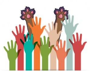 community-WORK-engagement 6